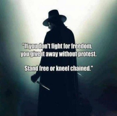 if-you-dont-fight-for-freedom-500x530